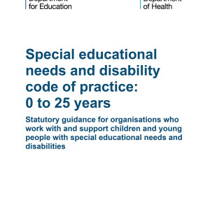 Special needs reforms: laudable or laughable?