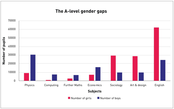 Girls shun 'geeky' computing AS-levels