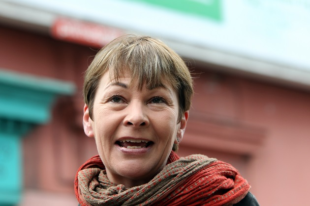 Caroline Lucas to launch second attempt for compulsory PSHE in schools
