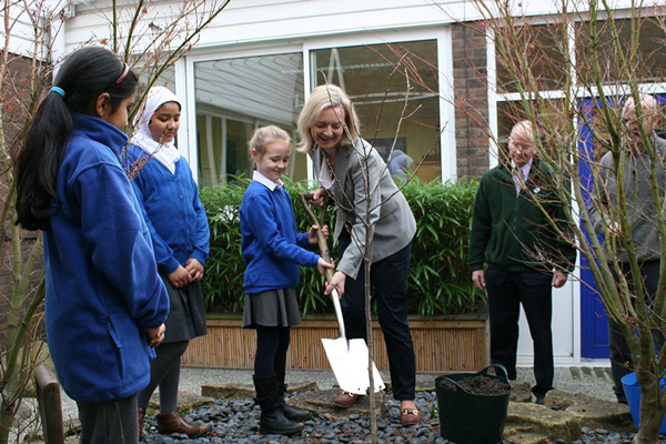 Pupils to plant one million trees