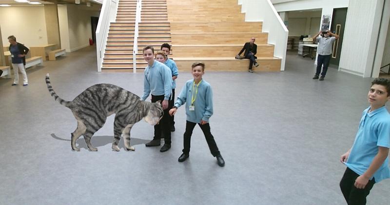 virtual-cat
