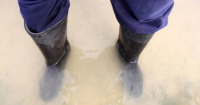 Flooded schools need millions to relocate