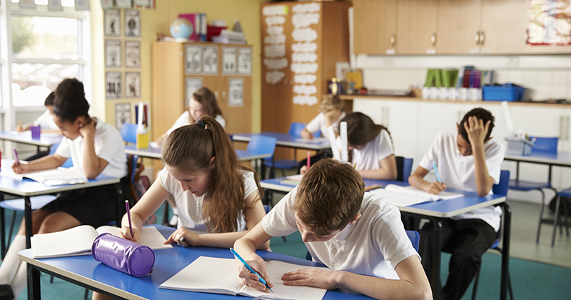 Send us your schoolwork! Biggest study of grammar to help shape curriculum