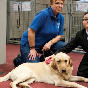 Pupil raises £5,000 for guide dog charity at school bake sale