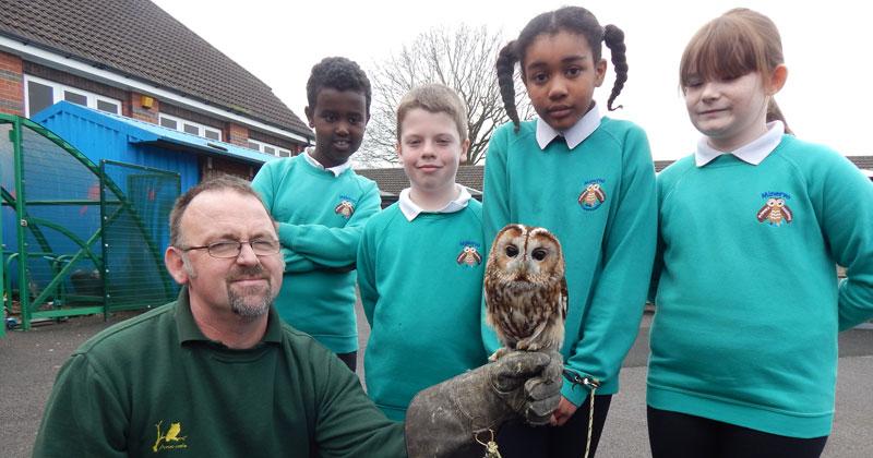Primary school pupils adopt a rescue owl