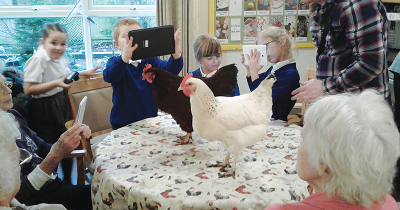 Primary school works with care home and its hens to combat loneliness in residents