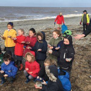 Coastal school joins campaign against pebble-pinchers