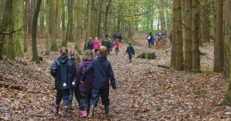 Study reveals positive impact of the outdoors on pupils' creative writing