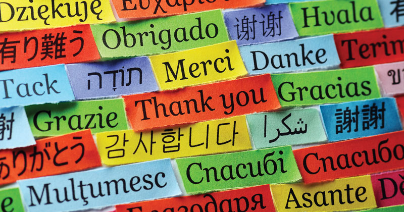 A third of state schools allow pupils to opt out of languages in year 9