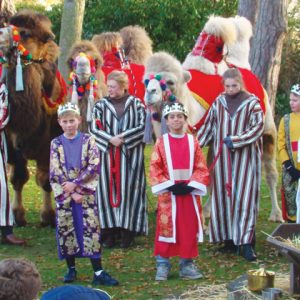 Real animals steal the show in primary school's nativity play
