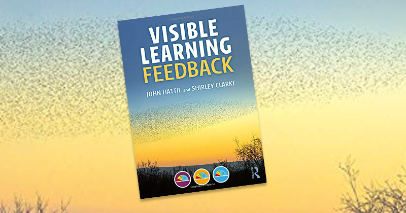 Visible Learning Feedback Book Review