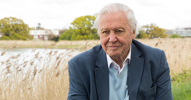 'Attenborough effect' is 'fuelling' interest in GCSE science