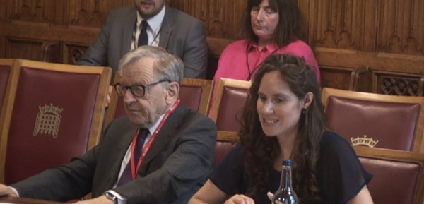 Harrison at the ed select committee